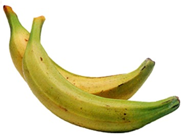 Learn how to cook Plantains at Sawdustsisters.com