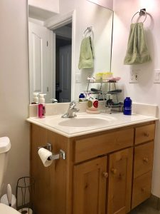 Basement Bathroom Makeover for $100